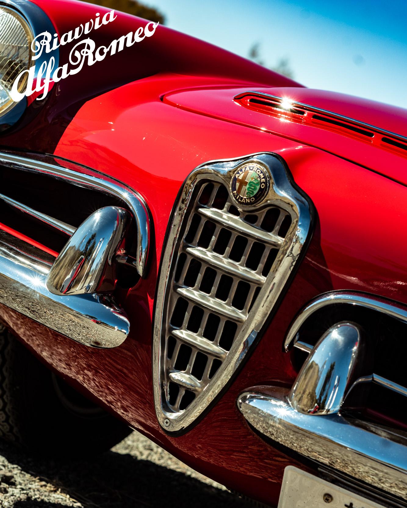 1963 Giulia Spider